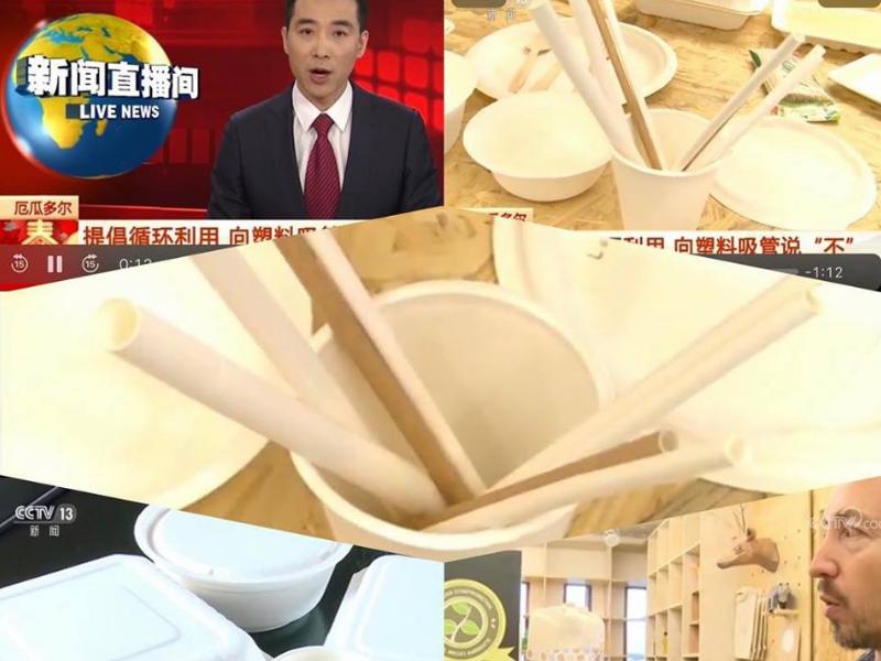 EmpaqueVerde Reportaje de la TV China