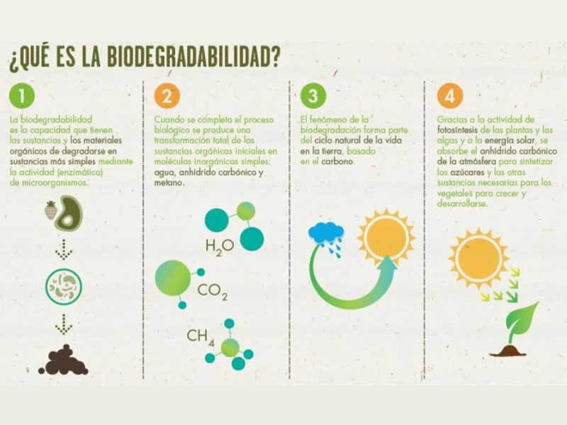 ¿Qué es la Biodegradabilidad?