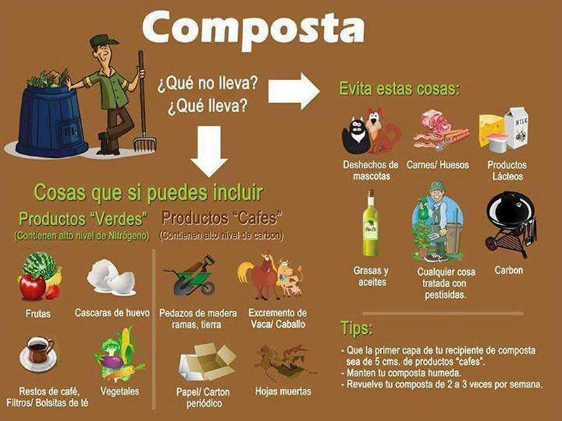 Composta, cosas que puedes incluir para hacer tu compost
